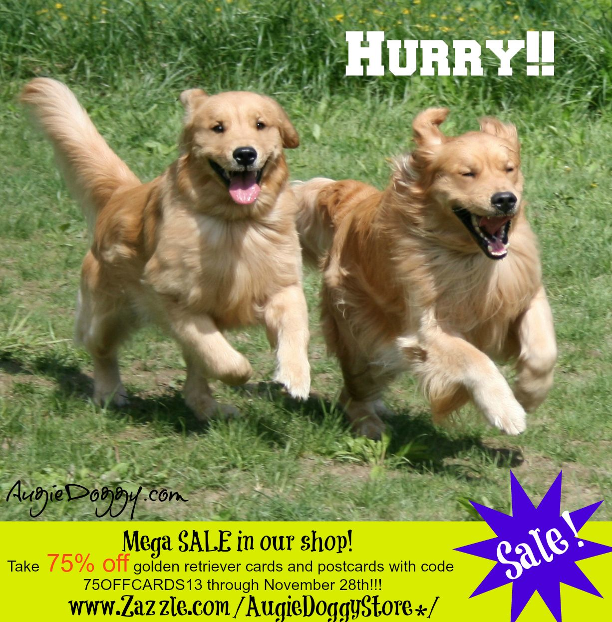 A Pre Black Friday Sale In Our Golden Retriever Shop Take 75 Off