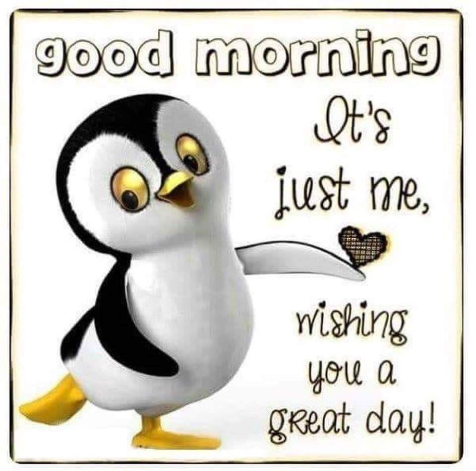 Pin By Ashley Loves Penguins On Good Morning Morning Quotes Funny Good Morning Hug Good Day Quotes