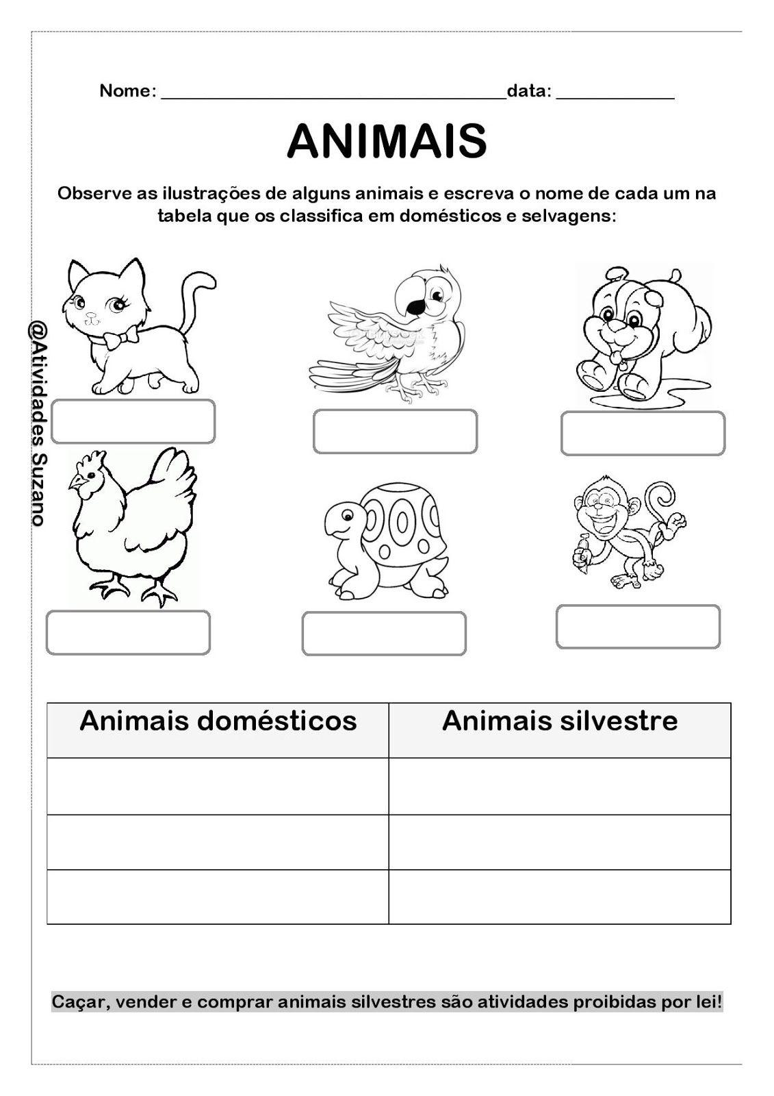 Pin De Taciele Tolfo Em Atividades Sobre Animais Atividades