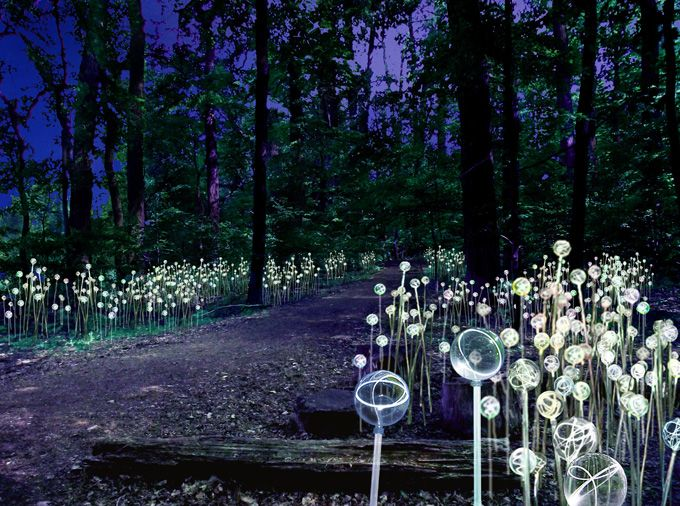 Reminder: Longwood Gardens' Blockbuster Light Installation By ...