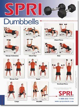 spri dumbbell exercise wall chart 1211  entrenamiento