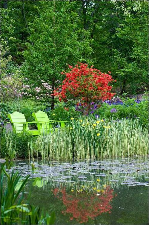 Plants On The Edge Of The Water And Seating Area Beautiful Gardens Dream Garden Garden Tours