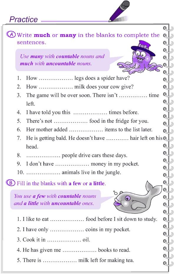 Grade 4 Grammar Lesson 14 Determiners