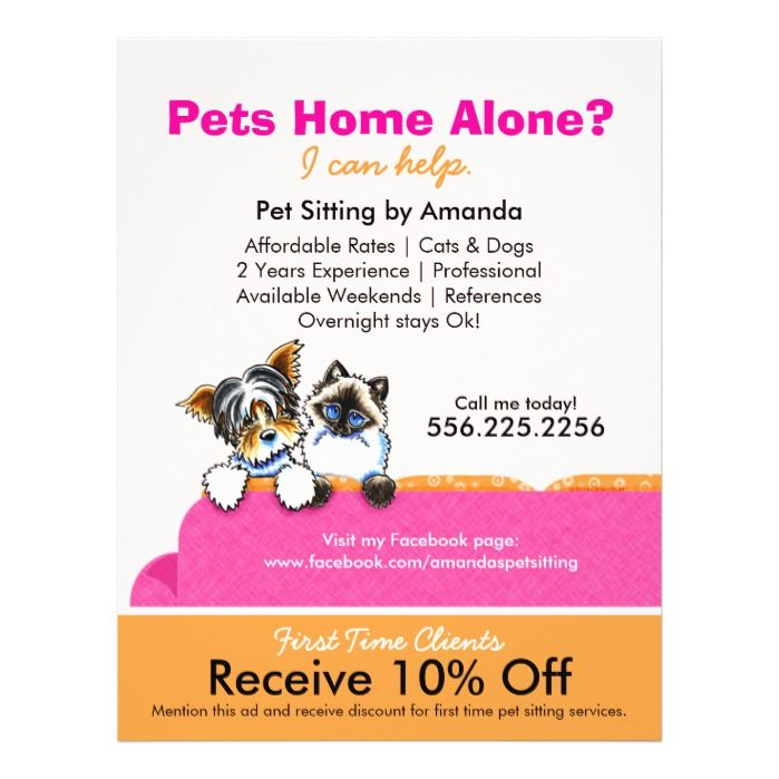 Pet Sitter Coupon Ad Yorkie Cat Couch Pink 25 flyers