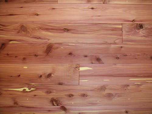 American Pacific Red Cedar Closet Liner Plank 15sq Ft At Menards Cedar Closet Red Cedar Cedar