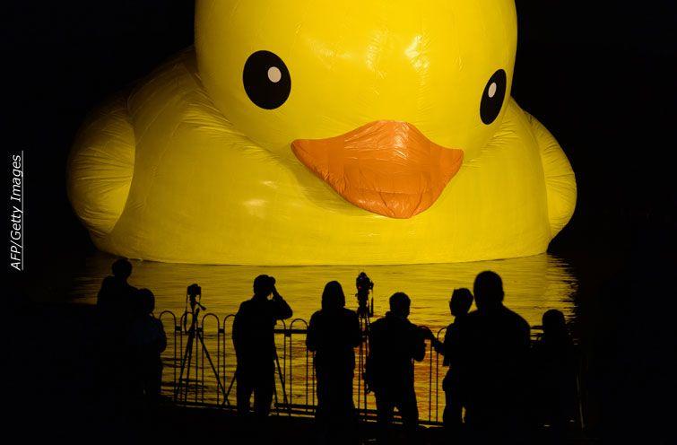 giant duck - Buscar con Google