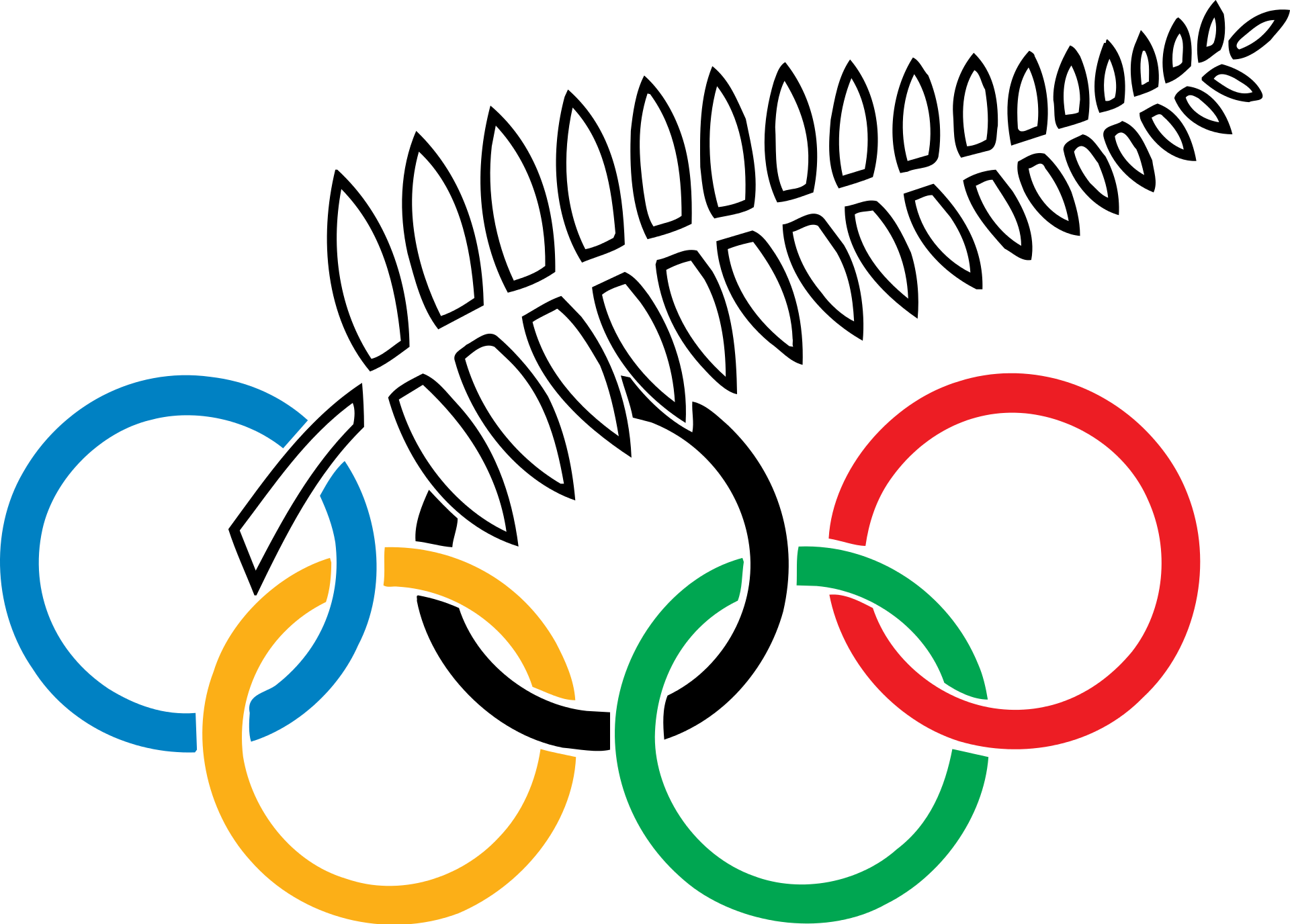 The New Zealand Olympic Committee Before 1994 The New Zealand Olympic And Commonwealth Games Association Is Summer Olympic Games Olympics Olympic Committee