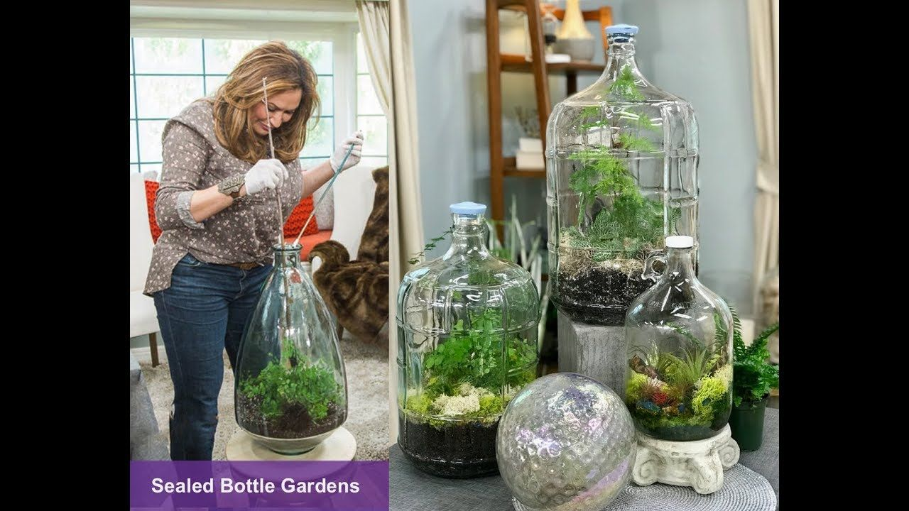 Sealed Bottle Gardens Step By Step Youtube Creativity Bottle