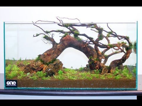 Aquarium Hardscape Materials Aquascaping - YouTube (มีรูป ...