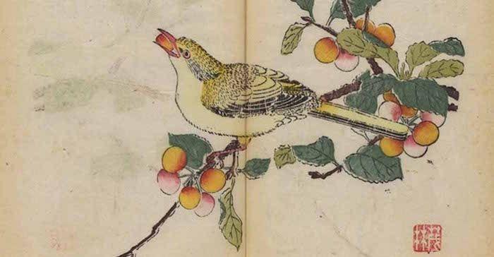 Kamuoyuyla İlk Kez Paylaşılan Dünyanın İlk Çok Renkli Baskı Kitabı   http://www.nouvart.net/kamuoyuyla-ilk-kez-paylasilan-dunyanin-ilk-cok-renkli-baski-kitabi/