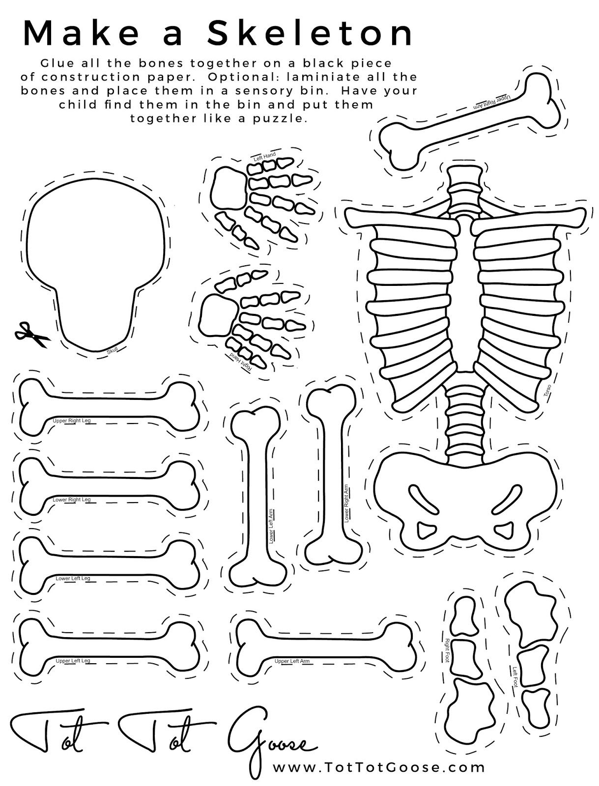 skeleton printable, all about me theme, preschool theme