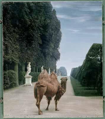 """""""Kameel in het park van Versailles (Camel in the Park at Versailles)"""", 1956 / Carel Willink (1900-1983) / Private Collection"""
