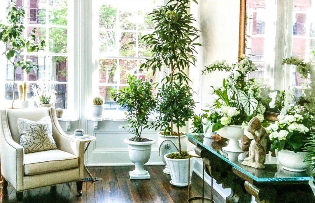 назначении, контактная как расставить цветы в доме фото сырники сметаной, вареньем