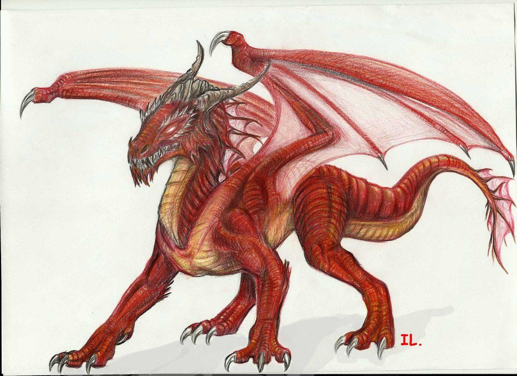 colorful flying dragons drawings of Yahoo Search Results