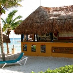 Our Dive Centers Pro Dive Mexico Cozumel Mexico Mexico Riviera Maya