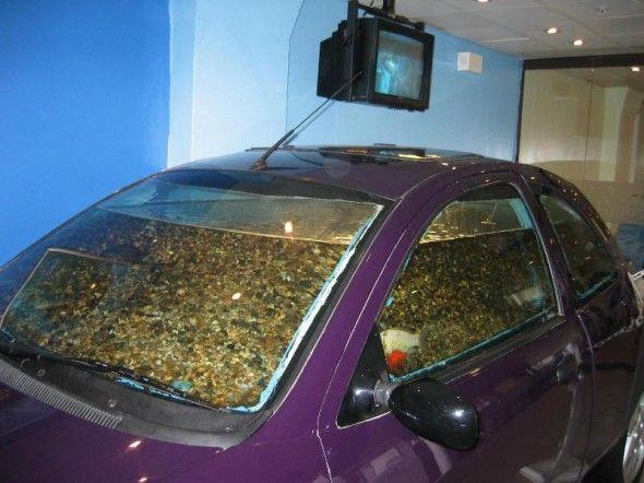 aquarium beds | ... Luxury Fabulous Impressive Technology for Home ...