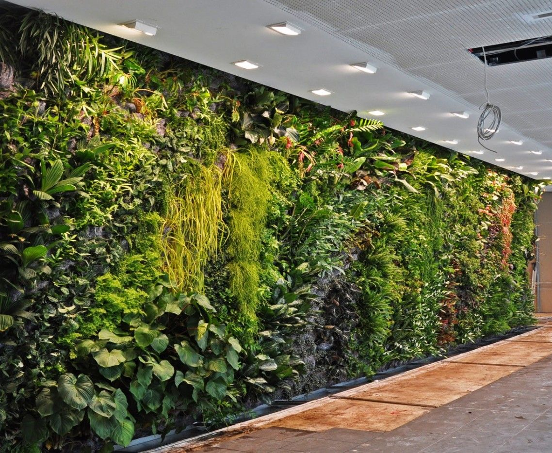 Stunning Indoor Vertical Garden Interior Design Ideas For Office Waiting  Room With Green Leaf Combination Green