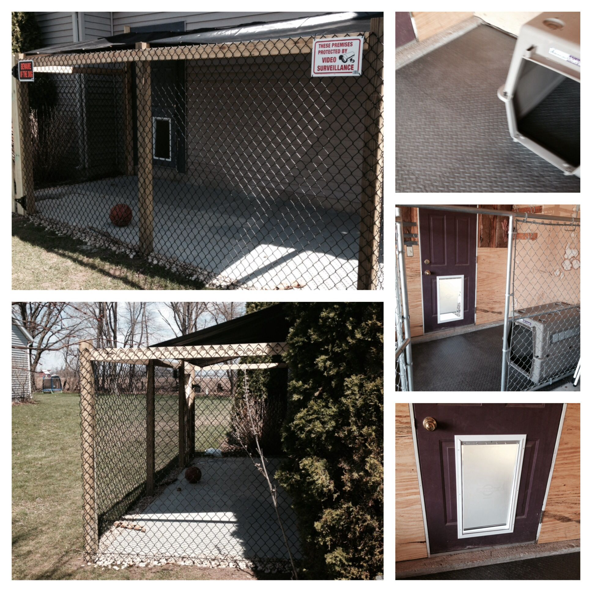 Indoor outdoor dog kennel o reino animal pinterest for Outside covered dog kennels