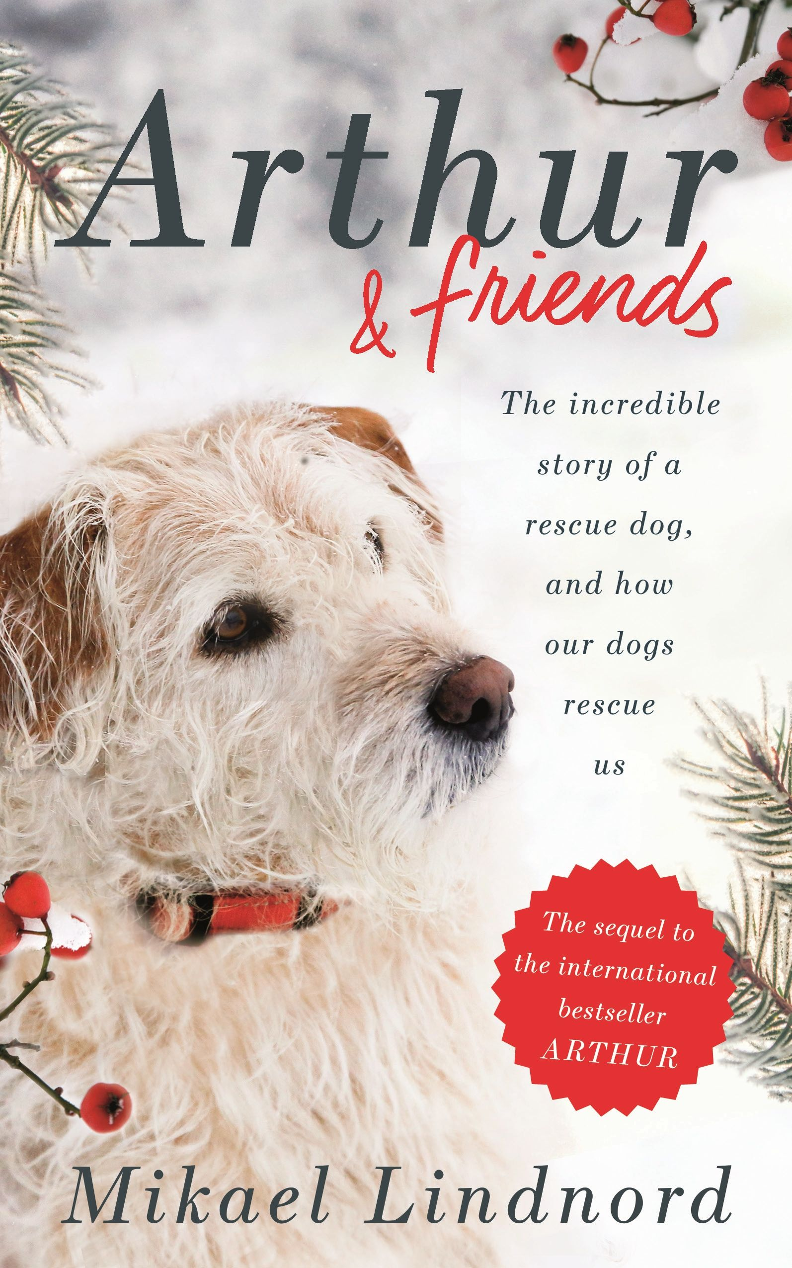 Book Club Rescue dogs, Dogs, The incredibles