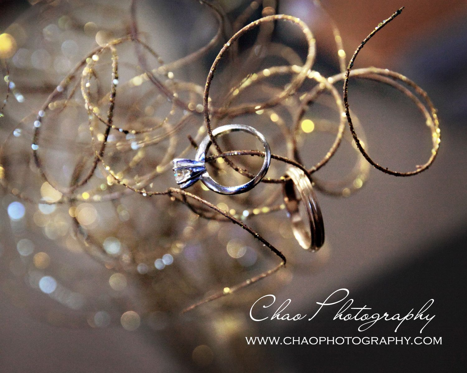 Pin By Jeff Chao On Wedding And Engagement Photography