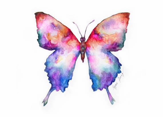 Butterfly Original Watercolor Painting 5 7 Colorful Wall Art