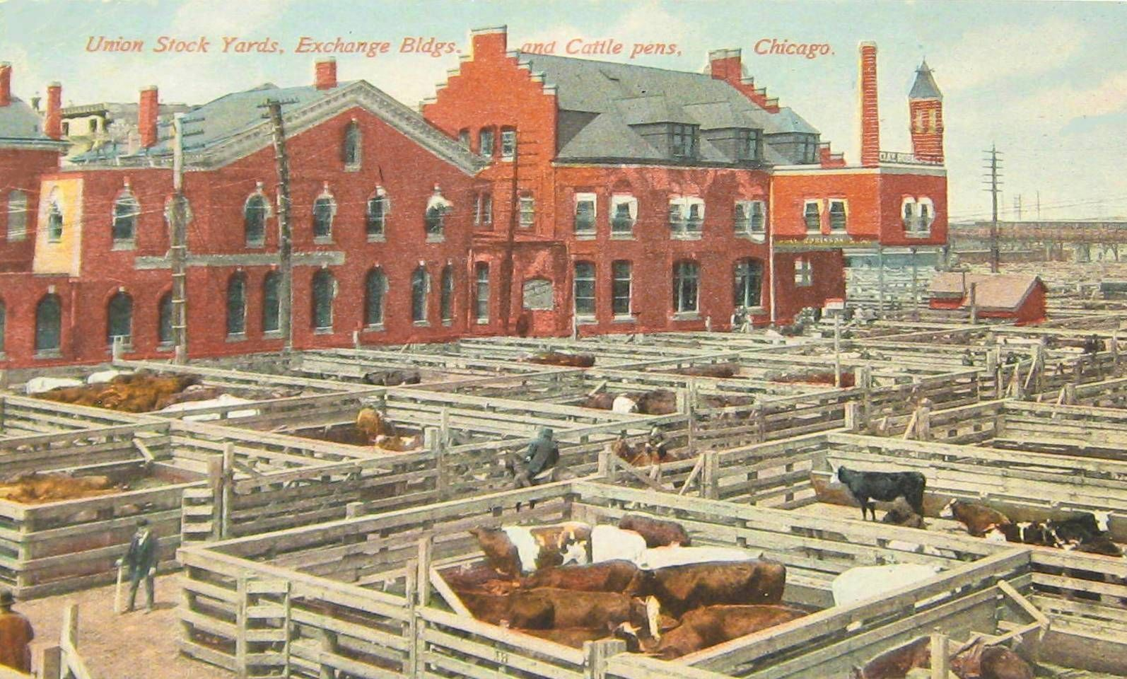 POSTCARD+-+CHICAGO+-+UNION+STOCK+YARDS+-+EXCHANGE+BUILDINGS+AND+ ...
