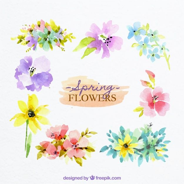 Download Spring Flowers In Watercolor Style For Free Vector Free