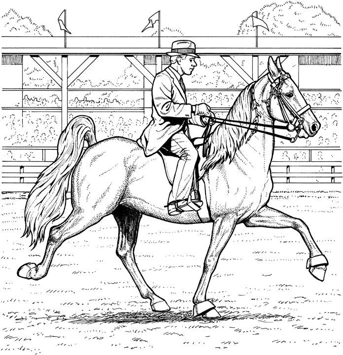 Trend Horse Jumping Coloring Pages 63 A cowboy riding his