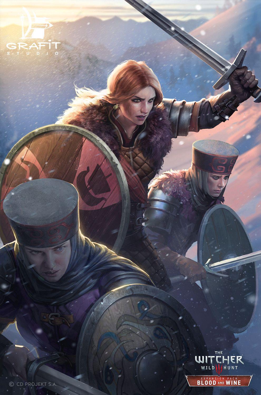 Gwent Cards Artwork Skellige Faction Witcher Art The Witcher Fantasy Illustration