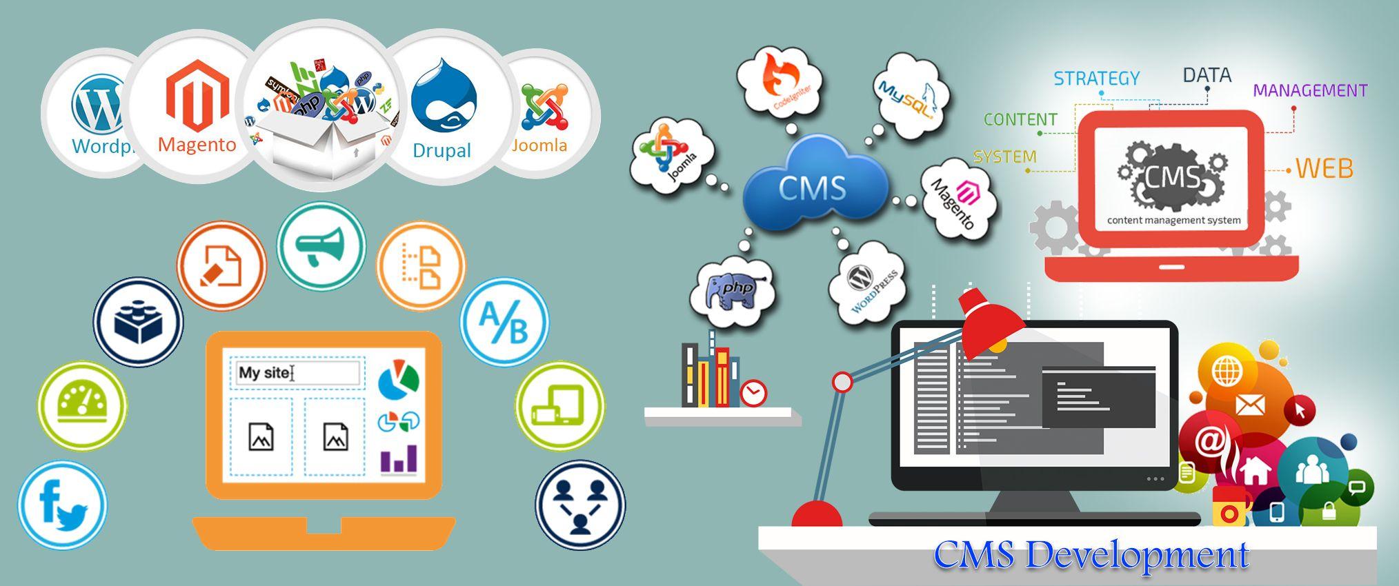 Cms Development Custom Web Design Web Design Company Web Development Design