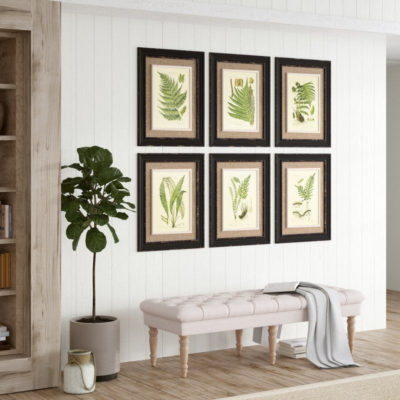 Birch Lane Heritage Frond 6 Piece Framed Graphic Art Print Set Reviews Birch Lane White Wall Decor Traditional Wall Art Beautiful Houses Interior
