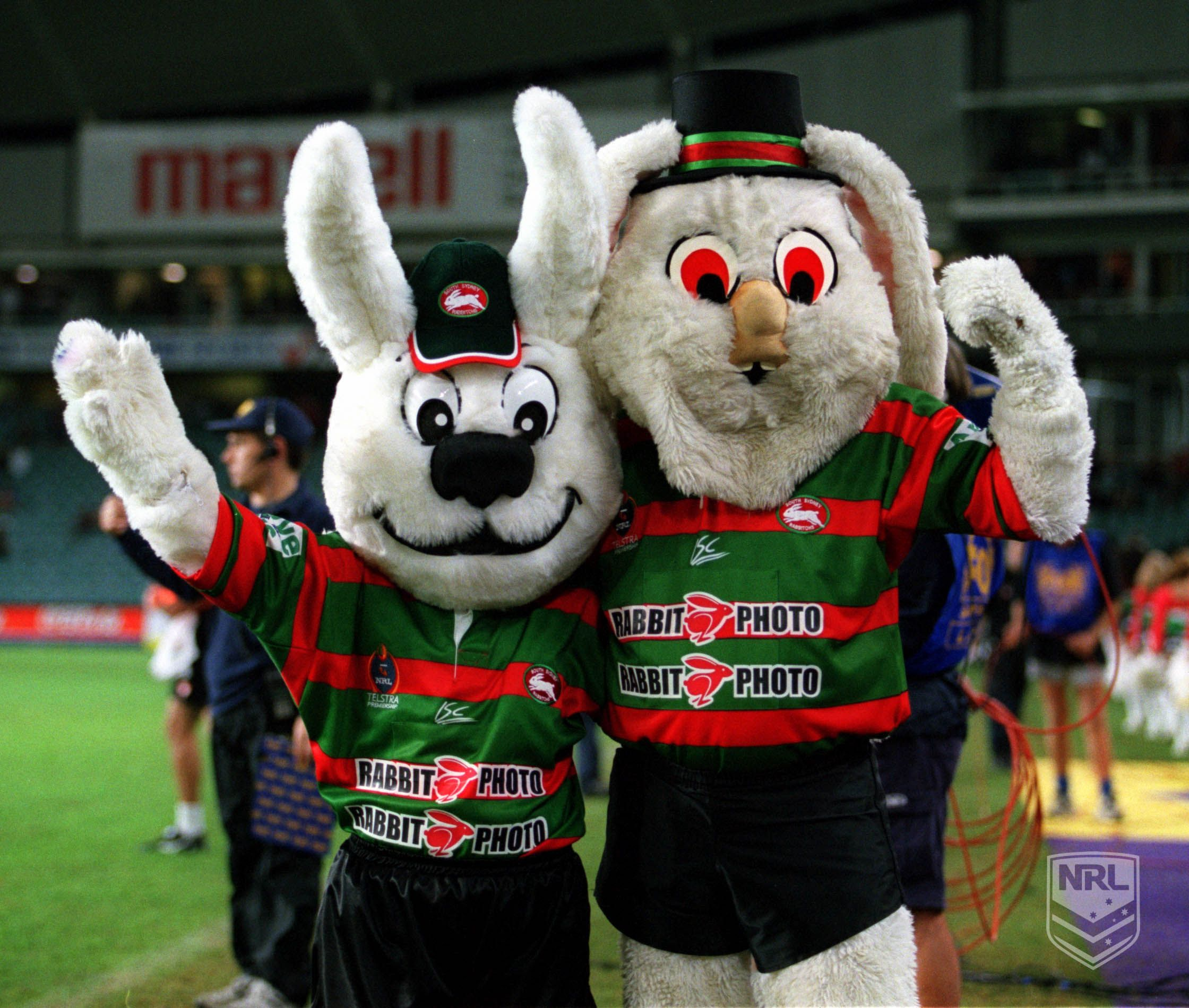 South Sydney Rabbitohs Mascot Rabbit Photos National Rugby League Nrl