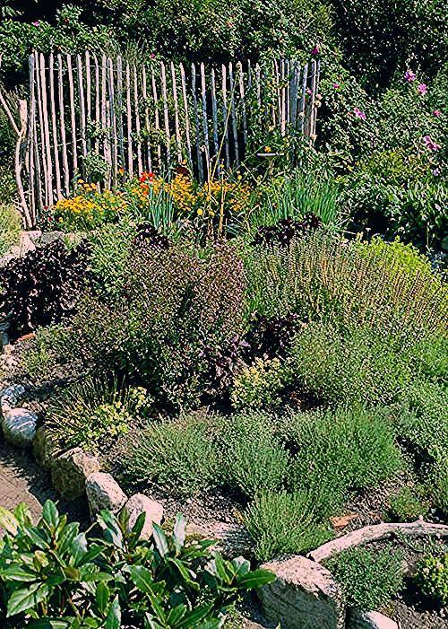 Photo of Kräutergarten anlegen: Die wichtigsten Tipps – DAS HAUS