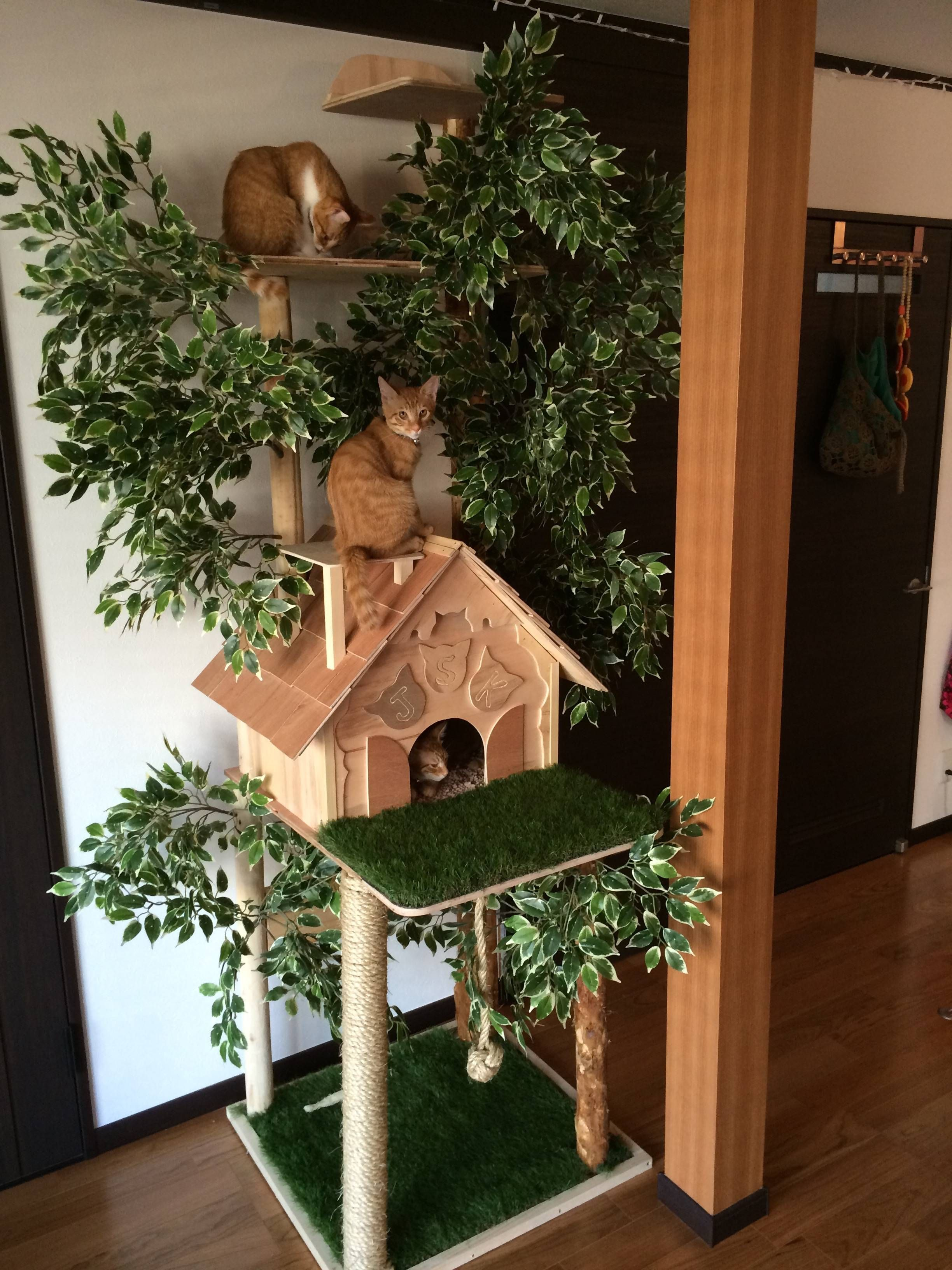 Cat Tree Houses Indoor Making A Natural Looking Cat Tree Home Decor Pinterest