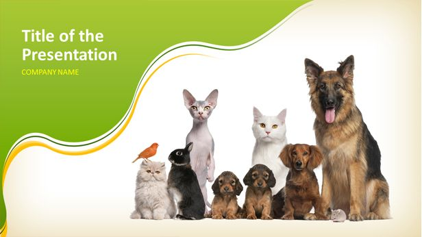 Animal powerpoint template httpslidelikestemplatefree animal powerpoint template httpslidelikestemplatefree presentation templatesfree animal powerpoint template toneelgroepblik Choice Image