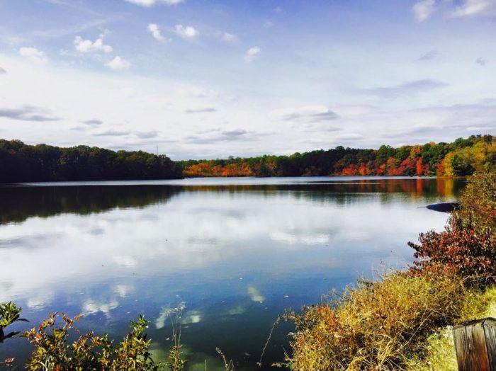 5. Killens Pond State Park, Felton