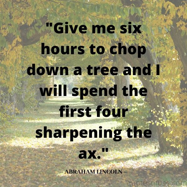 Give Me 6 Hours to Chop Down a Tree Quote