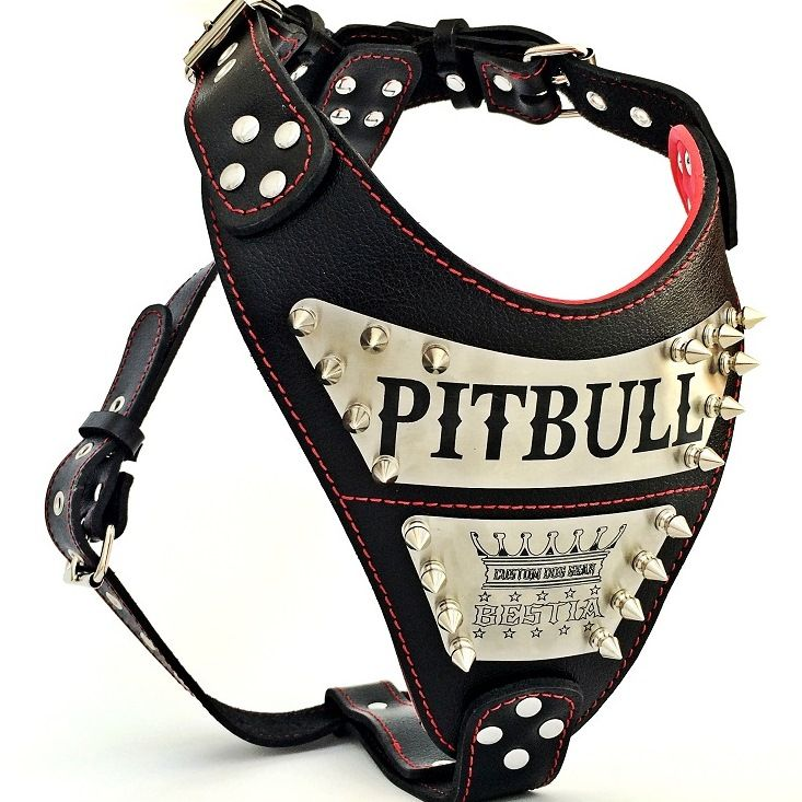 Personalized Leather Harnesses For Big Dogs Your Dog S Name