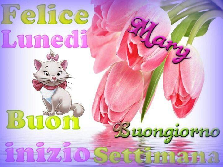 Buon giorno buon lunedi for Buon lunedi whatsapp