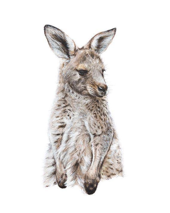 Kangaroo Print Australian Nursery Prints Kangaroo Art Print 8x10 Inch Kangaroo Art Baby Animal Art Nursery Animal Prints
