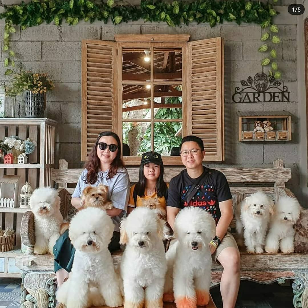 Holiday In Bandung China Town And Rumah Guguk Bandung