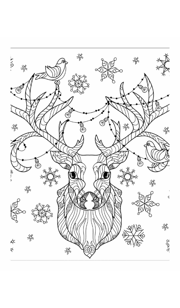 christmas coloring book a holiday coloring book for adults adult coloring books coloring - Holiday Coloring Book