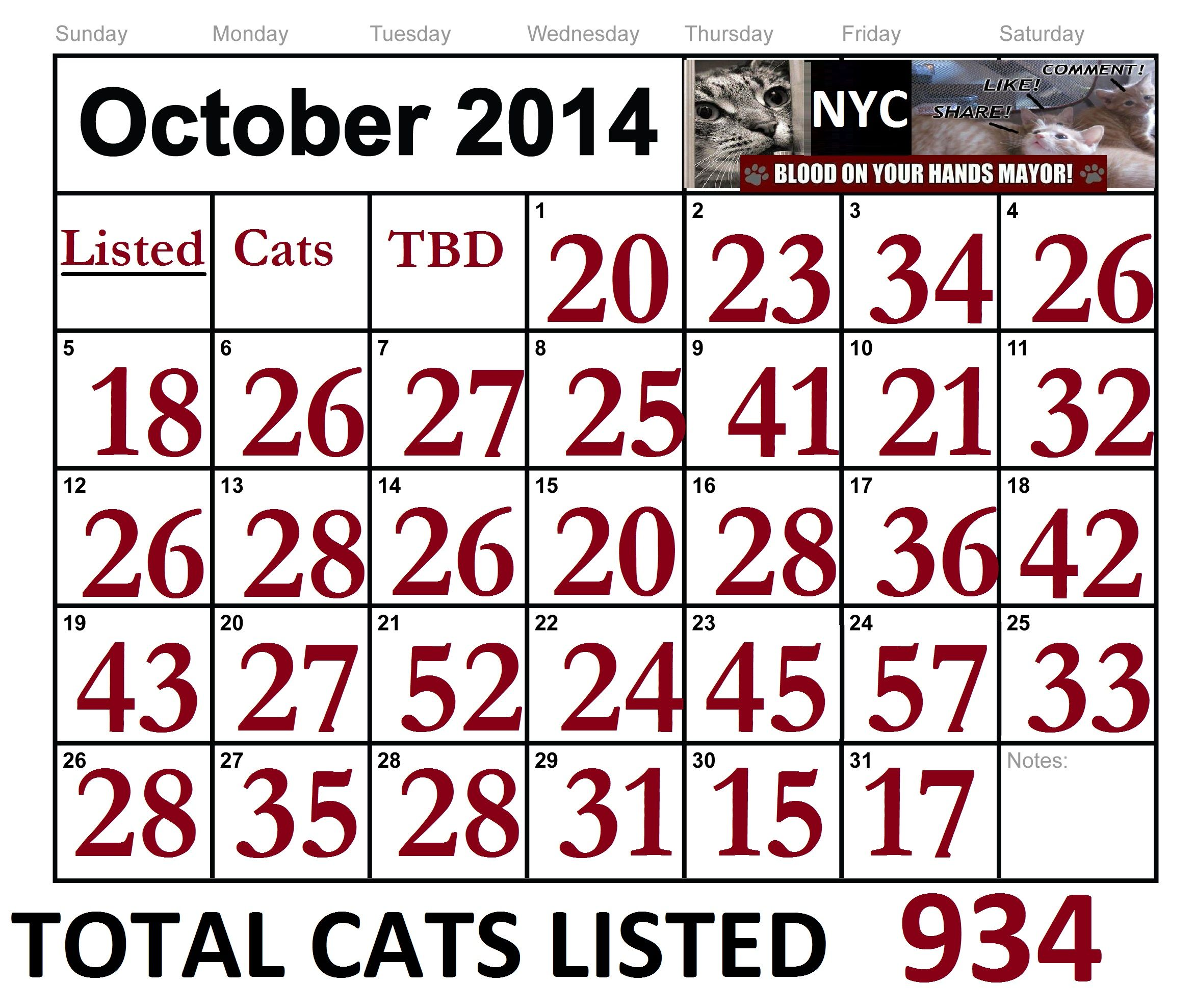 IN OCTOBER 2014 - NYC ACC LISTED A TOTAL OF 934 CATS/KITTENS TO BE DESTROYED!! Some made it out, BUT SADLY MANY DID NOT & WERE KILLED. https://www.facebook.com/nycurgentcats/photos_stream?tab=photos_albums