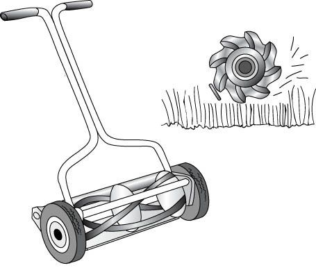 How To Choose The Right Mower For Your Lawn Reel Lawn Mower