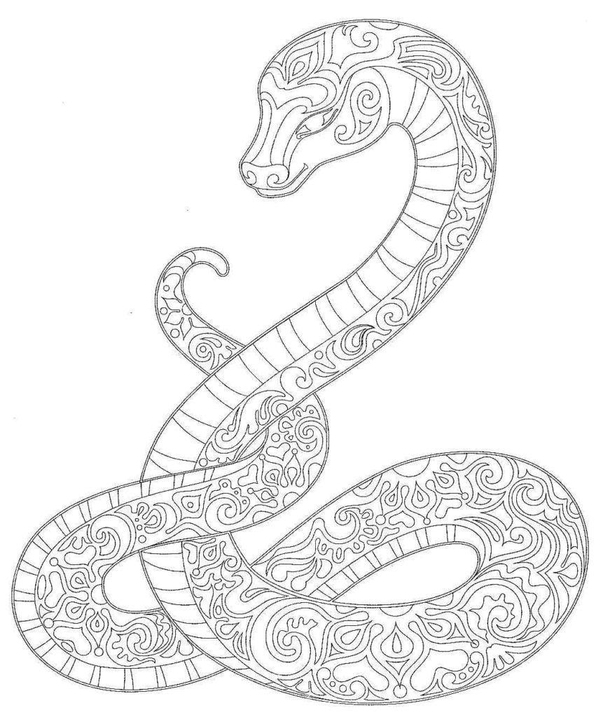 Pin By Cintia Daflon On Coloring Reptile Snake Coloring Pages Coloring Pages Mandala Coloring Pages