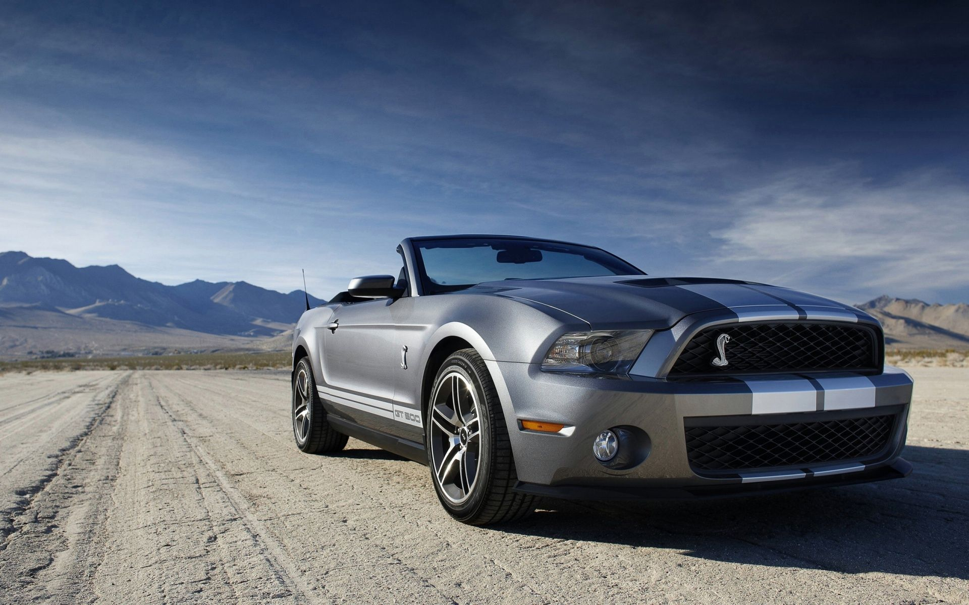 Ford Shelby Mustang Gt 500 Wallpaper Cas Wallpaper Hd Ford
