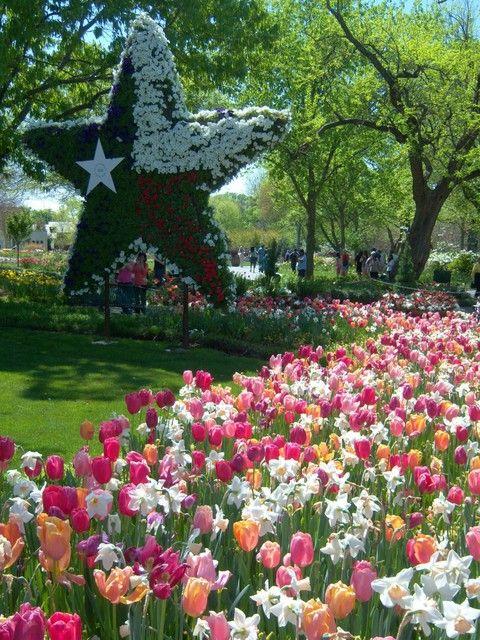 17d8079a3832e72d71172ab334f84a78 - Dallas Arboretum Botanical Gardens Dallas Tx