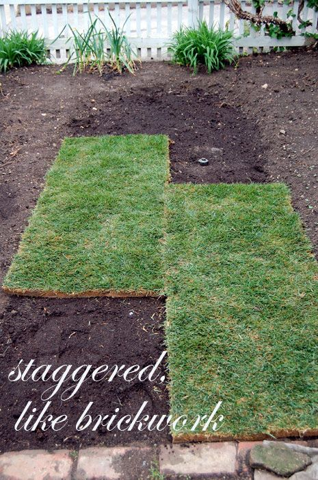 How To Lay Sod A Step By Step Guide To The Perfect Lawn How To Lay Sod Sod Installation Lawn And Garden