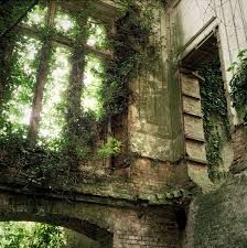 Image result for overgrown house #overgrownaesthetic