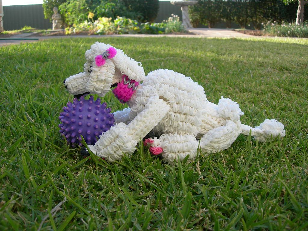 Poodle Puppy Thanks To How To Loom Your Dragon On Youtube Loom